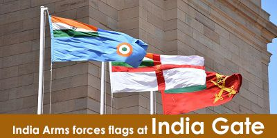 India Gate Delhi image
